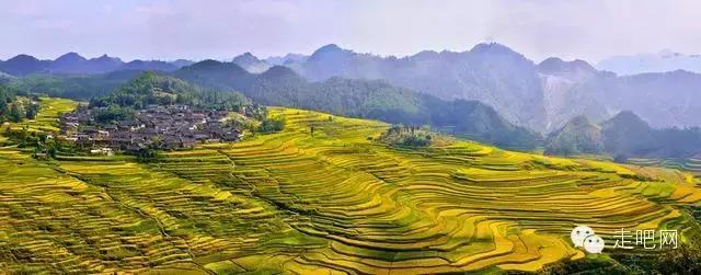 丹寨五彩高要梯田,系在山间的苗家腰带,美丽的大地艺术!